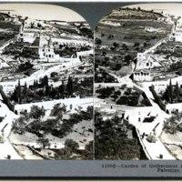 Garden of Gethsemane and Mount of Olives, Palestine.jpg