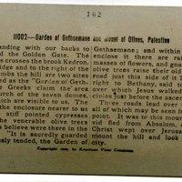 Garden of Gethsemane and Mount of Olives, Palestine_b.jpg